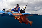 Keeton Eoff from Hobie Kayaks prepares to release an extremely large snapper that was caught while live bait fishing for tuna on the Tuna Coast of Panama.
