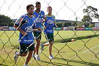 SÃO PAULO, 13 DE MAIO 2013 - TREINO PALMEIRAS - O jogador Valdivia(e), Vilson(c) e o goleiro Fernando Prass(d) durante treino na Academia de Futebol, na tarde desta segunda-feira(13) - FOTO: LOLA OLIVEIRA/BRAZIL PHOTO PRESS