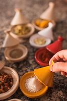 Afrique/Afrique du Nord/Maroc/Province d'Agadir/Tighanimine Elbaz: Ecolodge Atlas Kasbah - En cuisine   les différentes épices pour préparer le tajine de poulet aux oignons