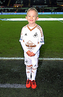 Child mascot before the Barclays Premier League match between Swansea City and Watford at the Liberty Stadium, Swansea on January 18 2016