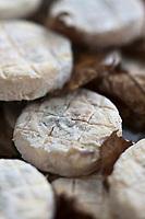 Europe/France/Poitou-Charentes/79/Deux-Sèvres/Niort: Mothais sur Feuille sur un étal du Marché<br /> Le Mothais sur feuille est un fromage au lait de chèvre. Fromage à pâte molle à croûte naturelle. Il bénéficie d'un affinage spécifique, en mûrissant 4 à 5 semaines dans un climat particulièrement humide. La feuille de châtaignier qui l'enrobe lui permet ainsi de garder toute son humidité, en le parfumant légèrement d'arômes boisés.