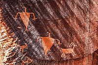 Petroglyphs and sunrise shade, Proposed La Sal Waters Wilderness, Utah