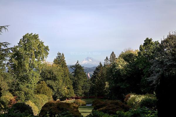 10 October 2009 - Portland, Oregon - Mt. Hood seen from Lewis & Clark College.  Photo Credit: Elizabeth A. Miller/Sipa Press