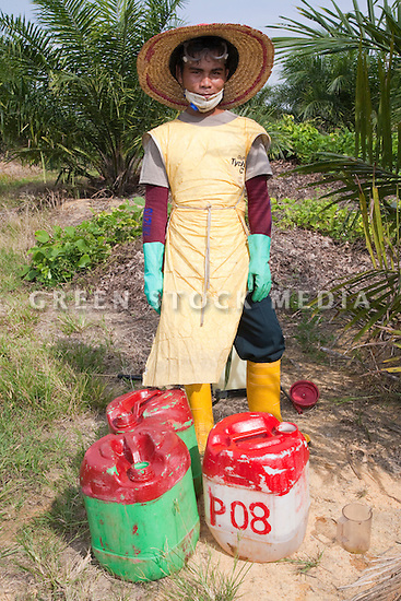 A portrait of a worker, from Lombok, Indonesia, preparing to spray glyphosate herbicide around young palm trees once a month to keep vegetation away. The Sindora Palm Oil Plantation, owned by Kulim, is green certified by the Roundtable on Sustainable Palm Oil (RSPO) for its environmental, economic, and socially sustainable practices. Johor Bahru, Malaysia