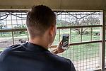 07.01.2019, Lion & Safari Park, Broederstroom, Kalkheuvel, RSA, TL Werder Bremen Johannesburg Tag 05<br /> <br /> im Bild / picture shows <br /> Ludwig Augustinsson (Werder Bremen #05) filmt mit Handy aus dem Ausflugsbus, <br /> <br /> Teil der Spieler besucht am 5. Tag des Trainingslager eine geführte Tour im Lion & Safari Park, <br /> <br /> Foto © nordphoto / Ewert