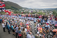 up Salmon Hill, overlooking (part of) the city of Bergen<br /> <br /> Men Elite Road Race<br /> <br /> UCI 2017 Road World Championships - Bergen/Norway