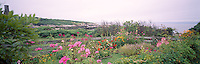 Celia Thaxter's recreated garden on Appledore Island, Isles of Shoals. Photograph by Peter E. Randall. panorama