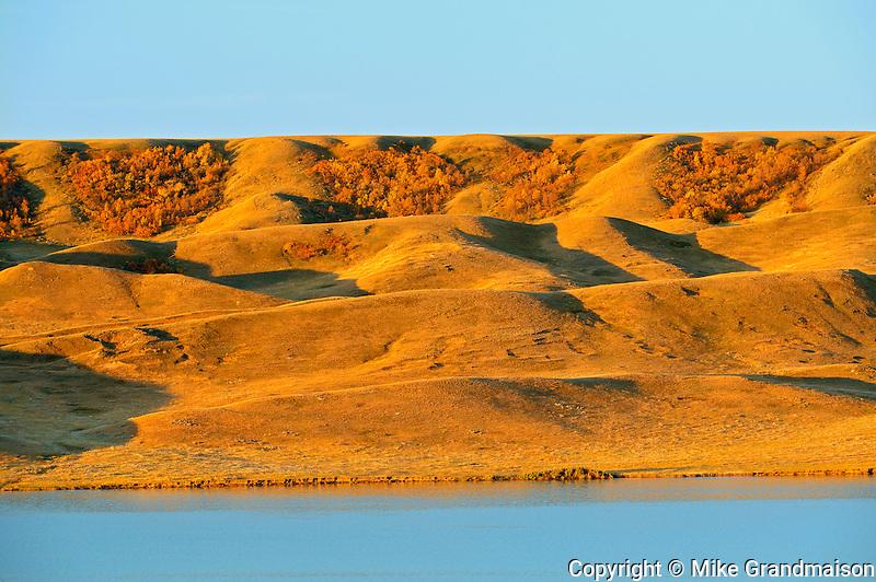 South Saskatchewan River and surrounding hills in autumn at sunrise<br /> Saskatchewan Landing Provincial Park<br /> Saskatchewan<br /> Canada