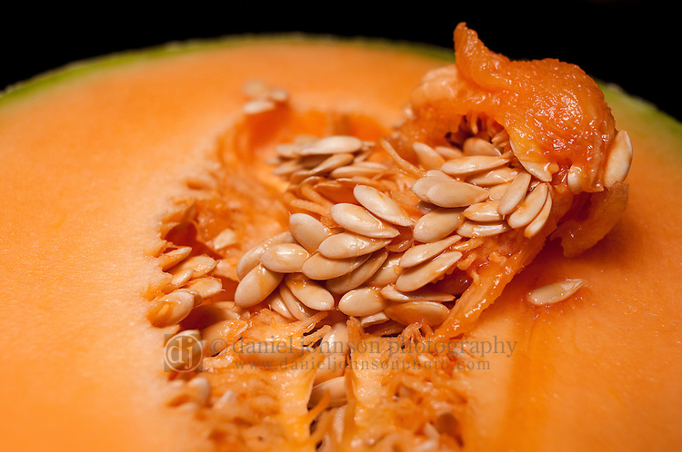 22 January 2010 -- Daily picture for January 22, 2010. Close-up of a cantaloupe melon. PHOTO/Daniel Johnson (Copyright 2010 Daniel Johnson)