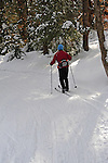 Cross Country Skier Enjoying a Snowy Woods Ski Trail in Vermont