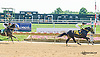 Street Car winning at Delaware Park on 8/25/15