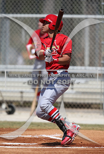 March 19, 2010:  Outfielder Tommy Pham (28) of the St. Louis Cardinals organization during Spring Training at the Roger Dean Stadium Complex in Jupiter, FL.  Photo By Mike Janes/Four Seam Images