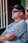 26 September 2018: Miami Marlins Third Base Coach Fredi Gonzalez watches play from the dugout  during a game against the Washington Nationals at Nationals Park in Washington, DC. The Nationals defeated the visiting Marlins 9-3, closing out Washington's 2018 home season. Mandatory Credit: Ed Wolfstein Photo *** RAW (NEF) Image File Available ***