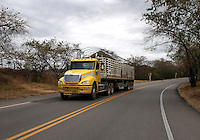 COLOMBIA-HUILA- 8-09-2014. Carreteras ,transporte por carreteras , camiones, tractomulas . roads , trucks .Photo: VizzorImage/ Felipe Caicedo / Staff
