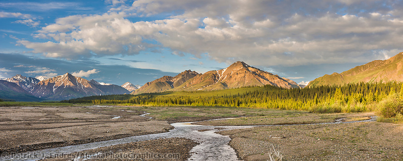 Teklanika river, Denali National Park, interior, Alaska.