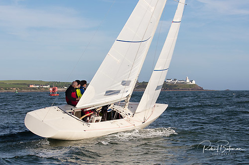 Don't Dilly Dally (Etchells) 952 Michael McCann