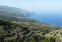 Spain, Canary Islands, La Palma, La Tosca near Barlovento: terraces, north coast