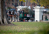 The White House Christmas tree arrives through the northwest gate prior to United States President Donald J. Trump and First lady Melania Trump accepting it on the North Driveway of the White House in Washington, DC on Monday, November 19, 2018. The 2018 White House Christmas Tree will arrive as in previous years by horse and carriage on the North Portico. The tree will be displayed in the Blue Room of the White House. <br /> Credit: Ron Sachs / CNP<br /> (RESTRICTION: NO New York or New Jersey Newspapers or newspapers within a 75 mile radius of New York City)