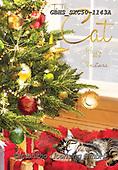 John, CHRISTMAS SYMBOLS, WEIHNACHTEN SYMBOLE, NAVIDAD SÍMBOLOS, paintings+++++,GBHSSXC50-1143A,#XX#
