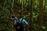 Tourists hiking in semi-deciduous tropical moist rainforest, Cocobolo Nature Reserve, Mamoni Valley, Panama