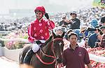 Jockey Nash Rawiller riding Mr Stunning #1 wins in the Longines Hong Kong Sprint (G1, 1200m) during the Longines Hong Kong International Races at Sha Tin Racecourse on December 10 2017, in Hong Kong, Hong Kong. Photo by Victor Fraile / Power Sport Images