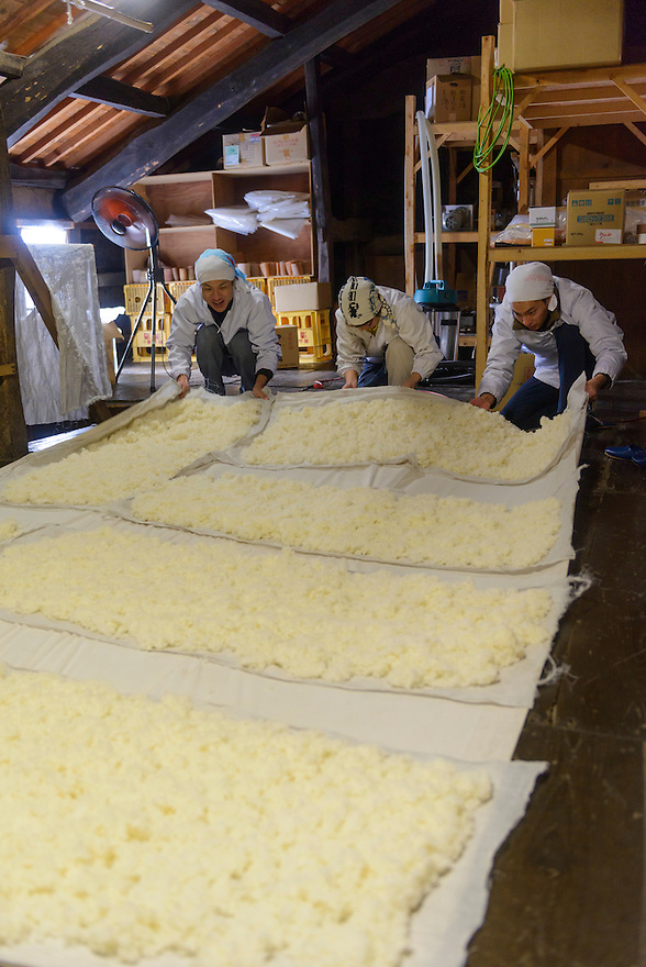 "(From left) brewery worker, Tsuji Makiko and Tsuji Soichiro handling steamed rice that is cooling on the upper level of the brewery. Tsuji Honten Sake, Katsuyama town, Okayama Prefecture, Japan, February 1, 2014. Tsuji Honten was founded in 1804 and has been at the cultural centre of the town of Katsuyama for over two centuries. 34-year-old Tsuji Soichiro is the 7th generation brewery owner. His elder sister, Tsuji Maiko, is the ""toji"" master brewer."