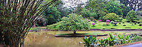 Panorama photo of Kandy Royal Botanical Gardens, Peradeniya, Kandy, Sri Lanka Hill Country, Asia. This is a panorama photo of Kandy Royal Botanical Gardens at Peradeniya, just outside Kandy in Sri Lanka Hill Country, Asia.