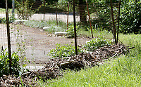NWA Democrat-Gazette/DAVID GOTTSCHALK  The bottom of the driveway fence Thursday, May 25, 2017, is lined with debris near the home of Elfi Davis caused by the series of recent rains flooding the near by creek and eroding the bank and flooding her property. The flooding has caused damage and deposited debris on her property.