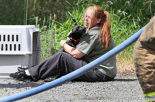 A dog is reunited with it's owner after being rescued by firefighters with Kittitas Valley Fire and Rescue from a structure fire at 4121 Fairview Road east of Ellensburg, Saturday, June 29, 2013. (Brian Myrick / Daily Record)