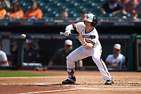 Trey Ochoa (9) of the Sam Houston State Bearkats squares to bunt against the Vanderbilt Commodores in game one of the 2018 Shriners Hospitals for Children College Classic at Minute Maid Park on March 2, 2018 in Houston, Texas. The Bearkats walked-off the Commodores 7-6 in 10 innings.   (Brian Westerholt/Four Seam Images)