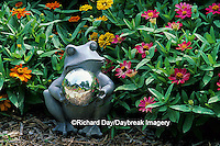 63821-08003 Frog Gazing Ball in Zinnias  Marion Co.  IL