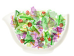 X-ray image of tossed salad in a brown bowl (color on white) by Jim Wehtje, specialist in x-ray art and design images.