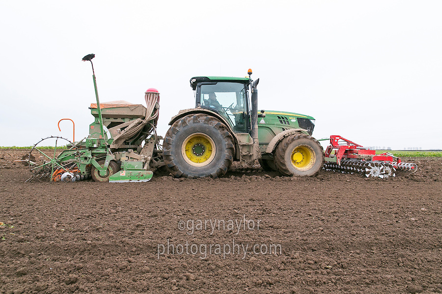 Drilling winter wheat following sugar beet - Lincolnshire, December