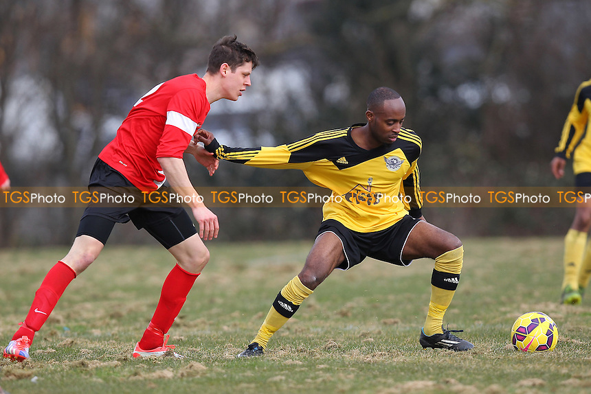 Boroughs United (yellow) vs Top Red - Hackney & Leyton Sunday League Junior Cup Semi-Final Football at East Marsh, Hackney Marshes, London - 08/03/15 - MANDATORY CREDIT: Gavin Ellis/TGSPHOTO - Self billing applies where appropriate - 0845 094 6026 - contact@tgsphoto.co.uk - NO UNPAID USE