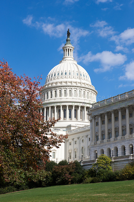 The US Capitol Building dome framed by fall foliage in Washington, DC.