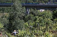 Val di Susa: un uomo assiste dal suo campo la protesta contro l'avvio dei lavori per il tunnel dell'alta velocità.