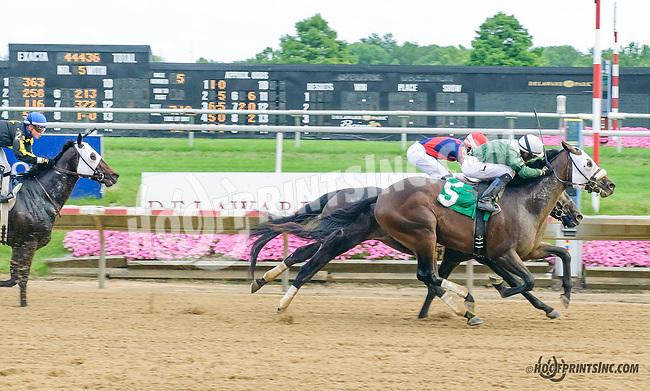 Western Conqueror at Delaware Park on 7/6/15