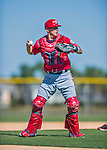 25 February 2016: Washington Nationals catcher Jose Lobaton works drills during the first full squad Spring Training workout at Space Coast Stadium in Viera, Florida. Mandatory Credit: Ed Wolfstein Photo *** RAW (NEF) Image File Available ***