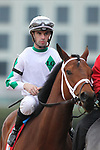 February 17, 2020: Wells Bayou (1) with jockey Florent Geroux aboard before the Southwest Stakes at Oaklawn Racing Casino Resort in Hot Springs, Arkansas on February 17, 2020. Justin Manning/Eclipse Sportswire/CSM
