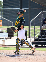 JJ Schwarz - 2018 AIL Athletics (Bill Mitchell)