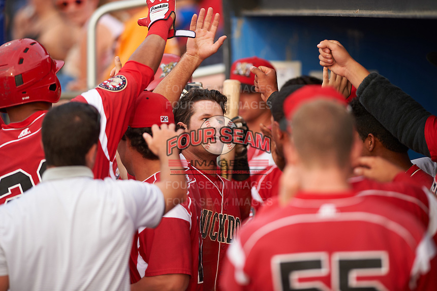 Batavia Muckdogs Aaron Knapp (5) high fives teammates after scoring a run during a game against the Brooklyn Cyclones on July 6, 2016 at Dwyer Stadium in Batavia, New York.  Batavia defeated Brooklyn 15-2.  (Mike Janes/Four Seam Images)