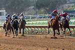 DEL MAR, CA  AUGUST 4:  The field of  the Graduation Stakes  in the stretch on August 4, 2018 at Del Mar Thoroughbred Club in Del Mar, CA.  (Photo by Casey Phillips/Eclipse Sportswire/ Getty Images)
