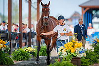 BEL-Joeroen Devroe presents Eres DL during the Horse Inspection for Dressage. 2018 FEI World Equestrian Games Tryon. Tuesday 11 September. Copyright Photo: Libby Law Photography