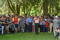 Tiger Woods (USA) hits from the trees on 11 during round 2 of the World Golf Championships, Mexico, Club De Golf Chapultepec, Mexico City, Mexico. 2/22/2019.<br /> Picture: Golffile | Ken Murray<br /> <br /> <br /> All photo usage must carry mandatory copyright credit (© Golffile | Ken Murray)