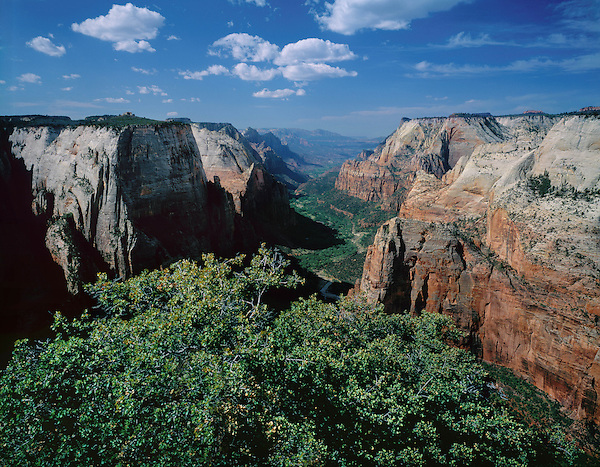 Angels Landing overlooking the Virgin River and Zion Canyon in Zion National Park, Rockville, Utah, USA.