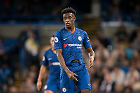 Callum Hudson-Odoi of Chelsea U23 wearing a ripped shirt from an earlier challenge during the Premier League 2 match between Chelsea U23 and Brighton & Hove Albion Under 23 at Stamford Bridge, London, England on 13 September 2019. Photo by Andy Rowland.