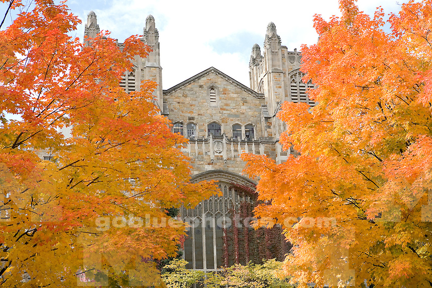 Central Campus, Law School in Fall. 10/31/05