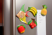 REFRIGERATOR MAGNETS<br /> Fruit and One Fish Magnets On A Refrigerator<br /> With grocery list.