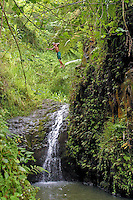 Boy jumping of cliff above Maunawili waterfall.