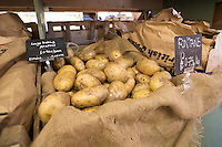 Fontane large baking potatoes fon display and for sale in a farm shop - Norfolk